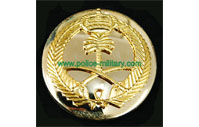 CB40301 Beret Badge